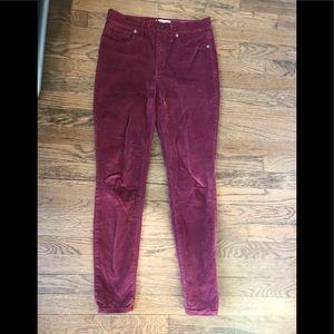 Madewell velvet burgundy pants